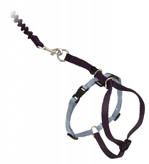 PetSafe Come with Me Kitty Black & Silver Harness and Bungee Leash for Cats