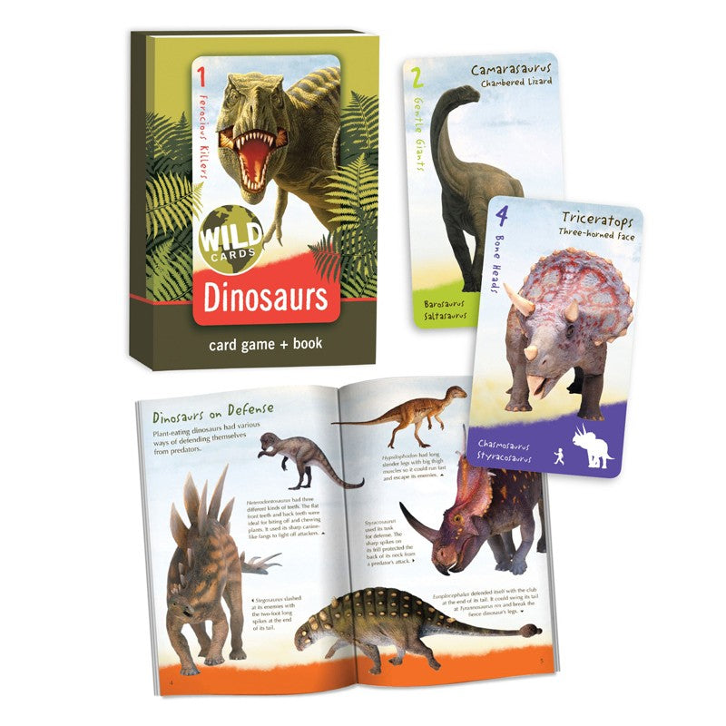 Dinosaur Card Games and Book
