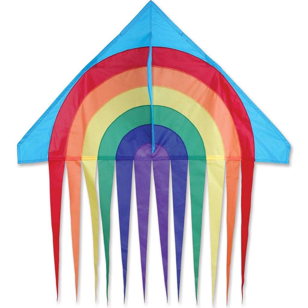 "Rainbow 56"" Streamer Delta Kite"