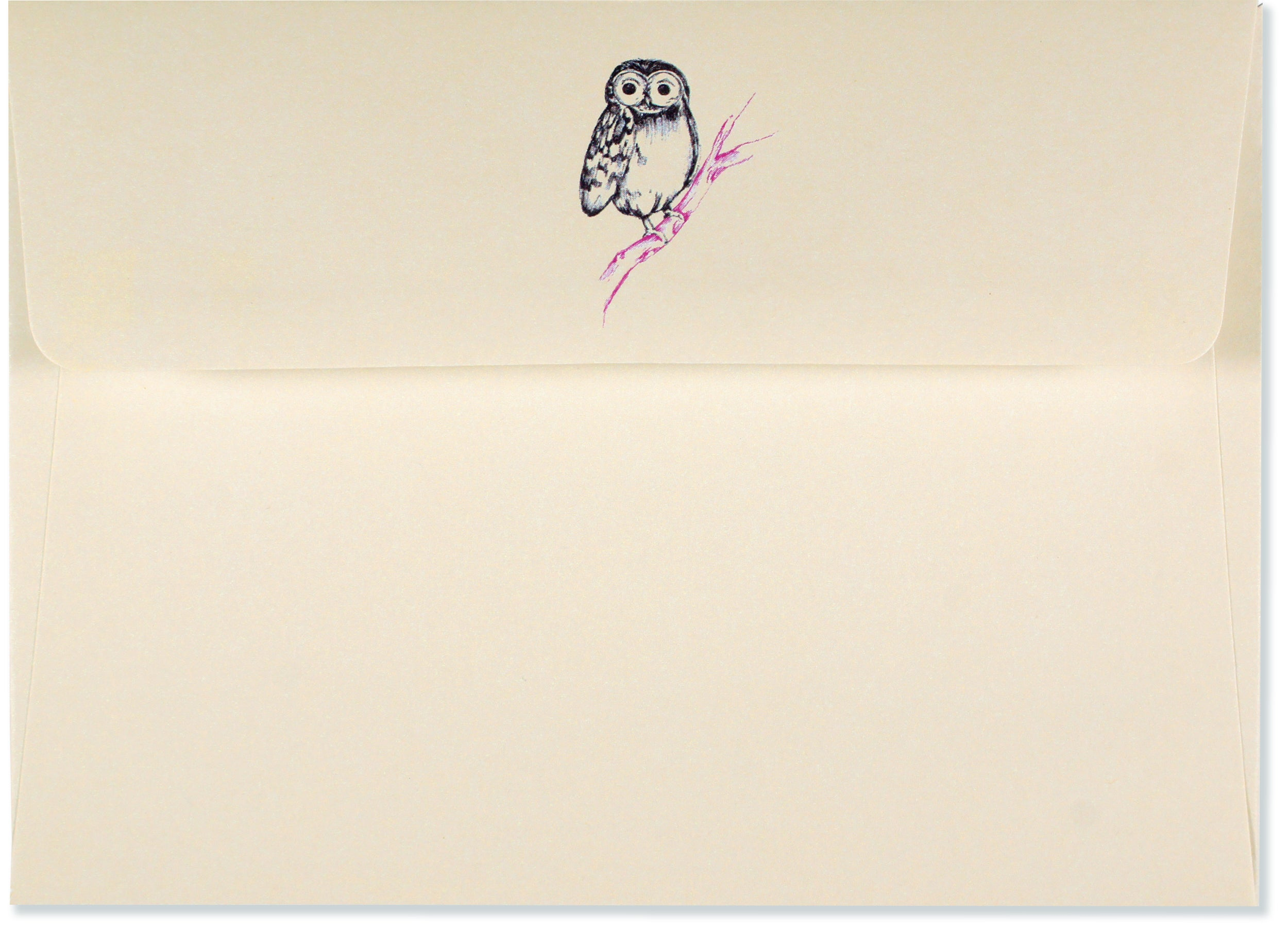Boxed Note Cards - Owl Portrait