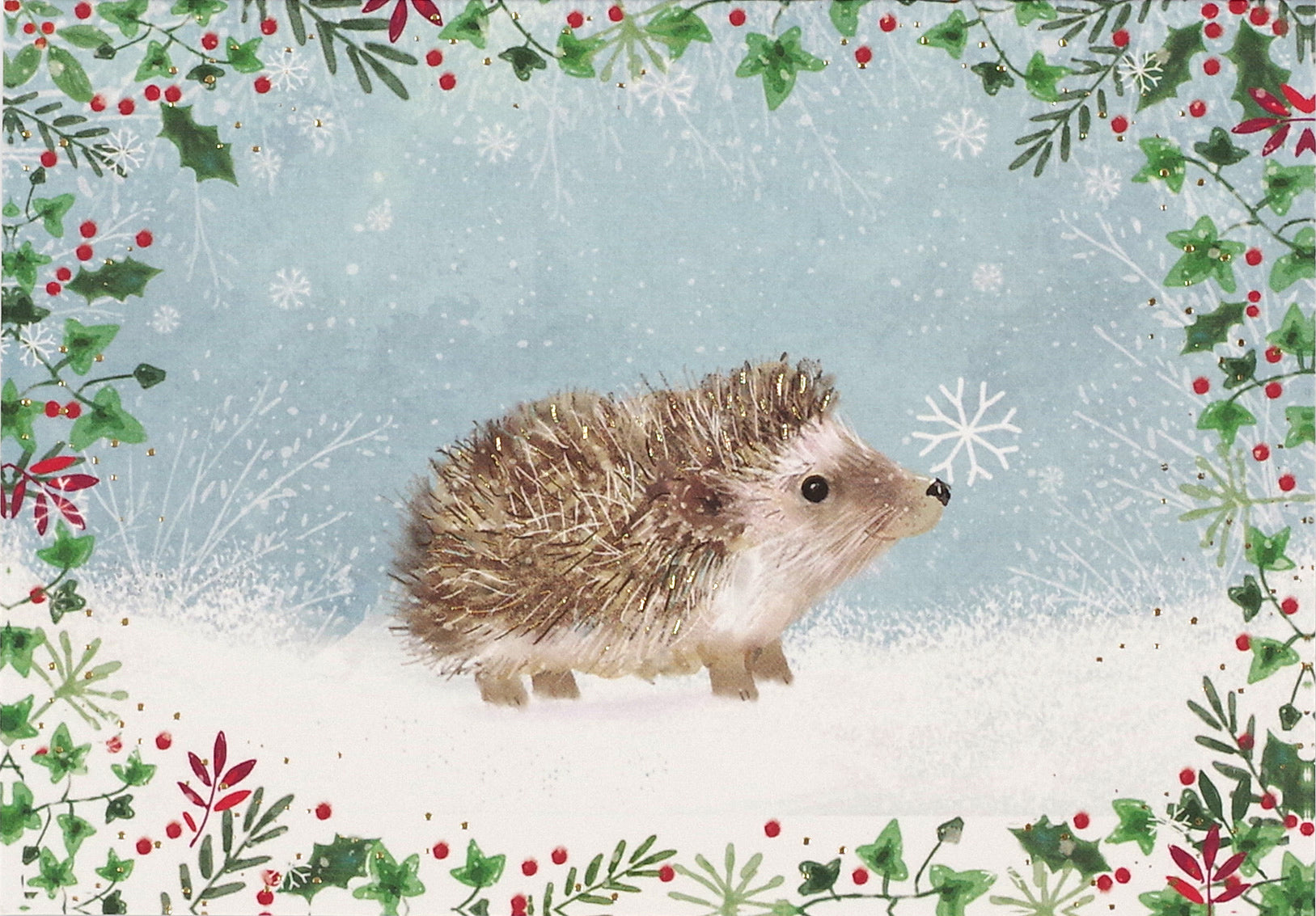 Boxed Christmas Cards - Happy Hedgehog