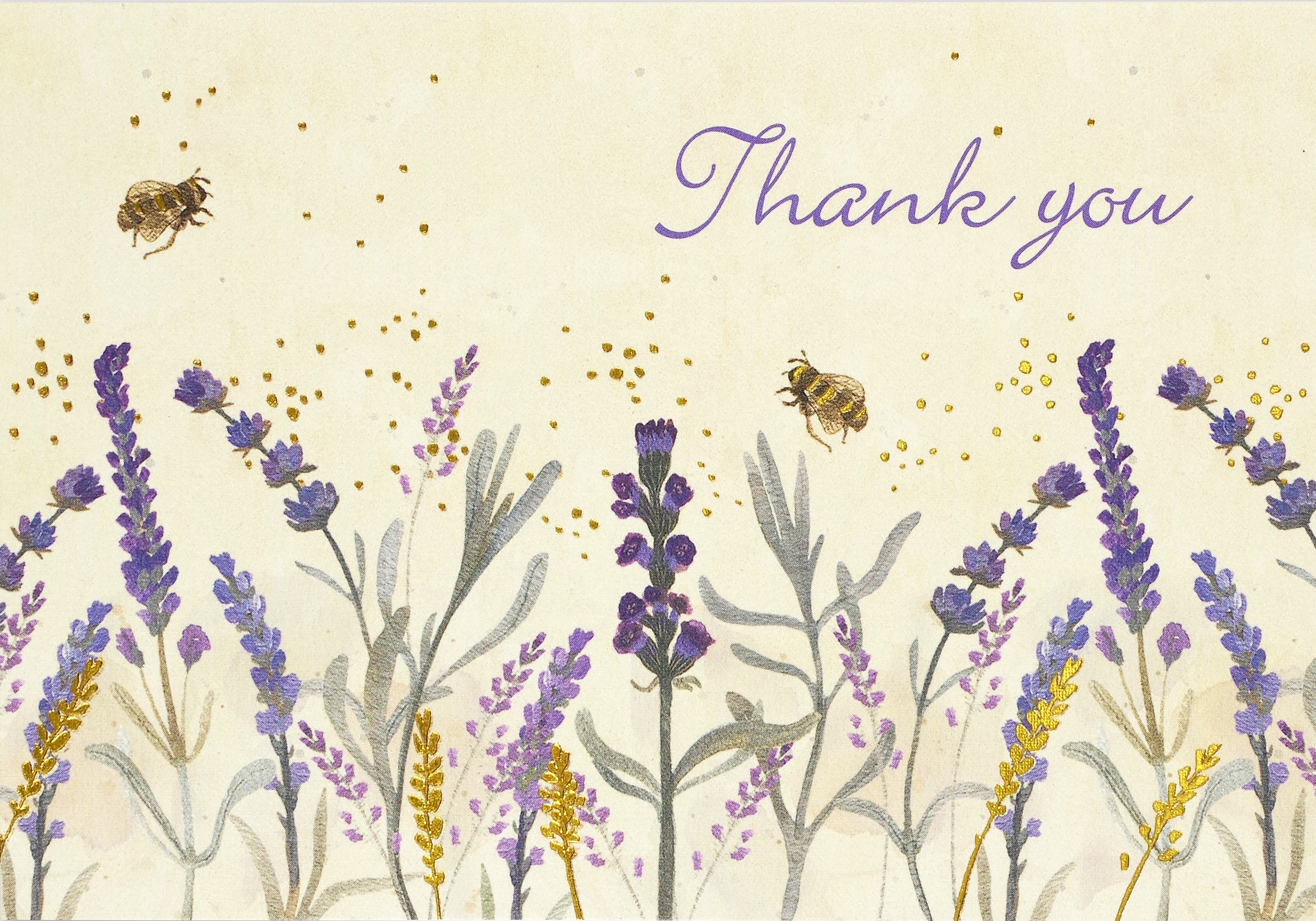 Boxed Thank You Cards - Lavender And Honey