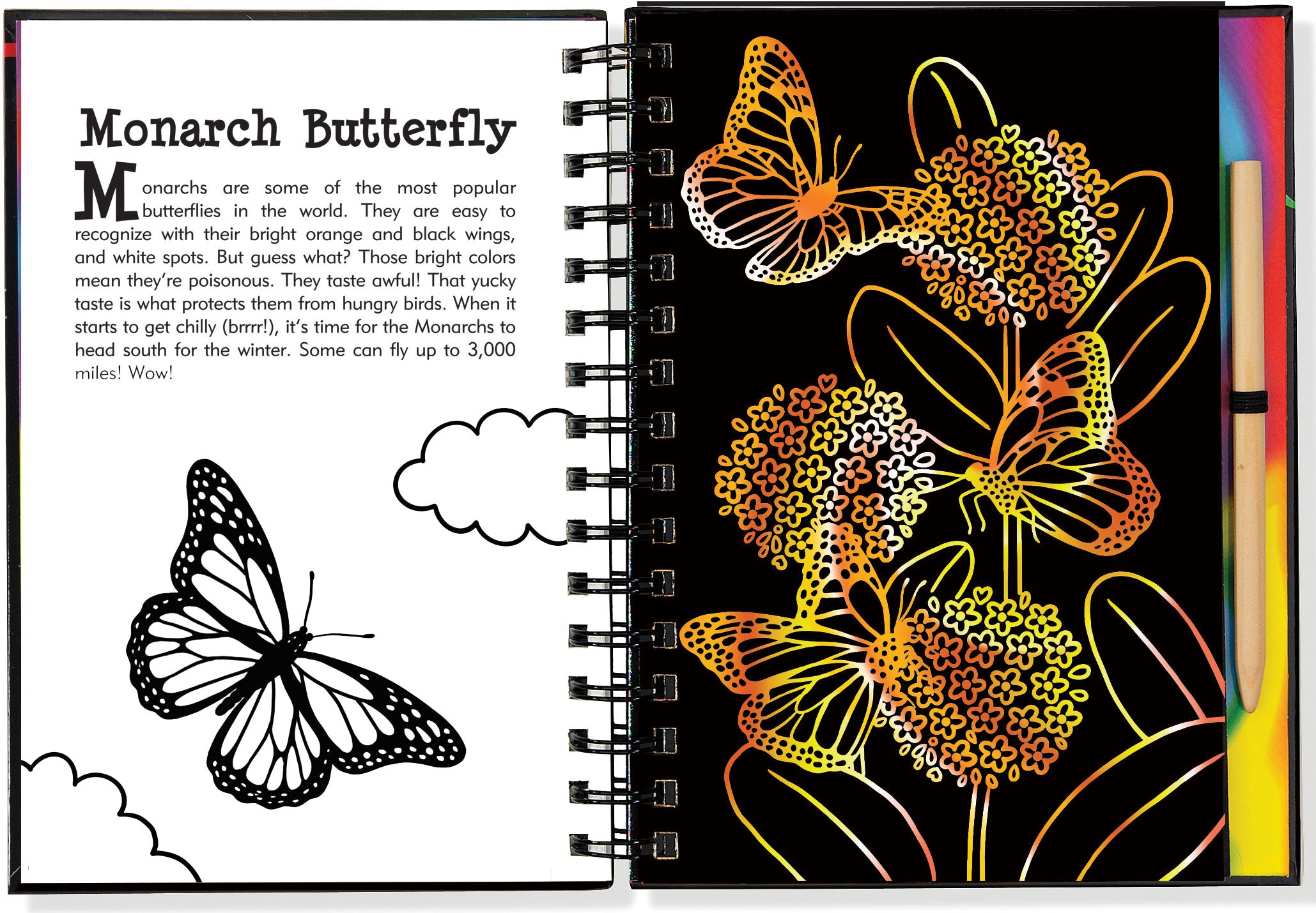 Scratch And Sketch - Butterflies And Friends