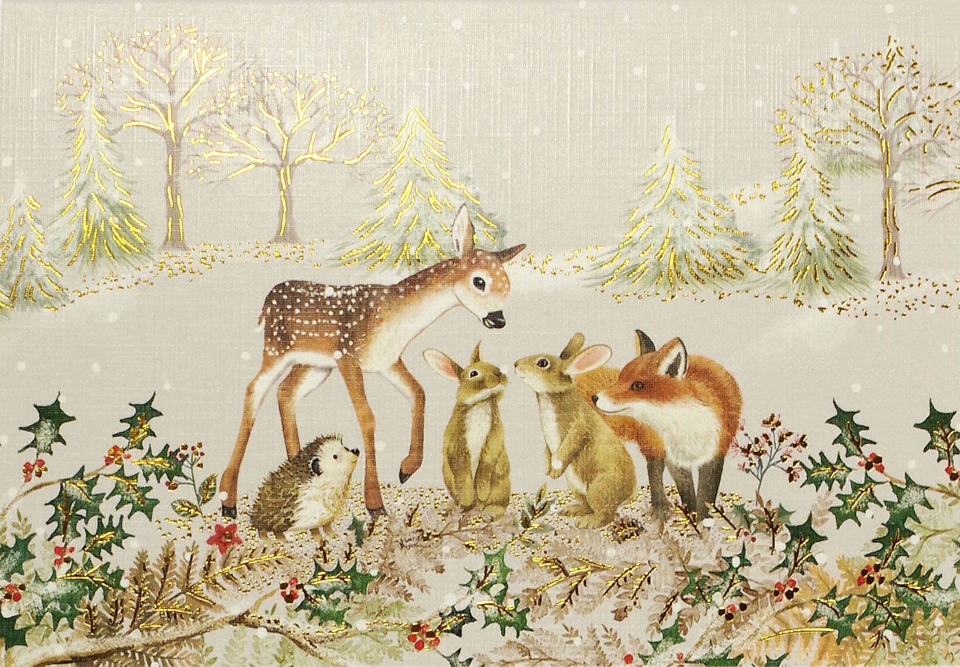 Boxed Christmas Cards - Furry Friends