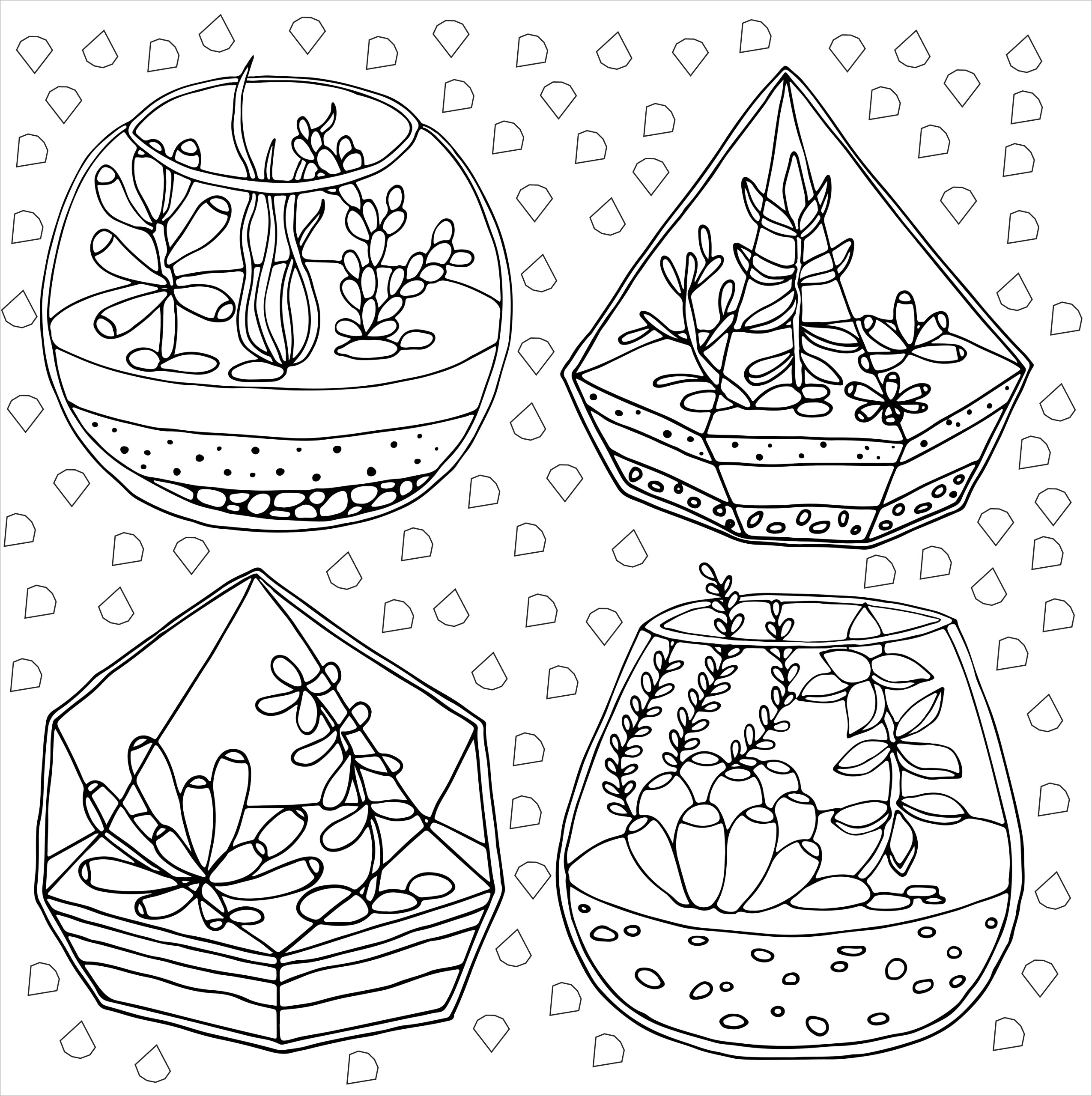 Succulents - Artist's Coloring Book