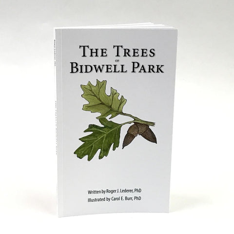 Trees of Bidwell Park