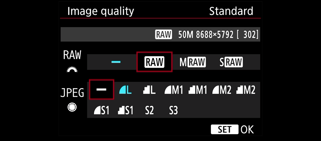 Canon RAW menu
