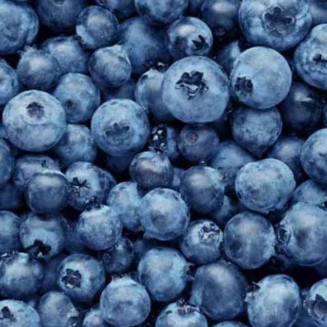 Blueberries - Organic