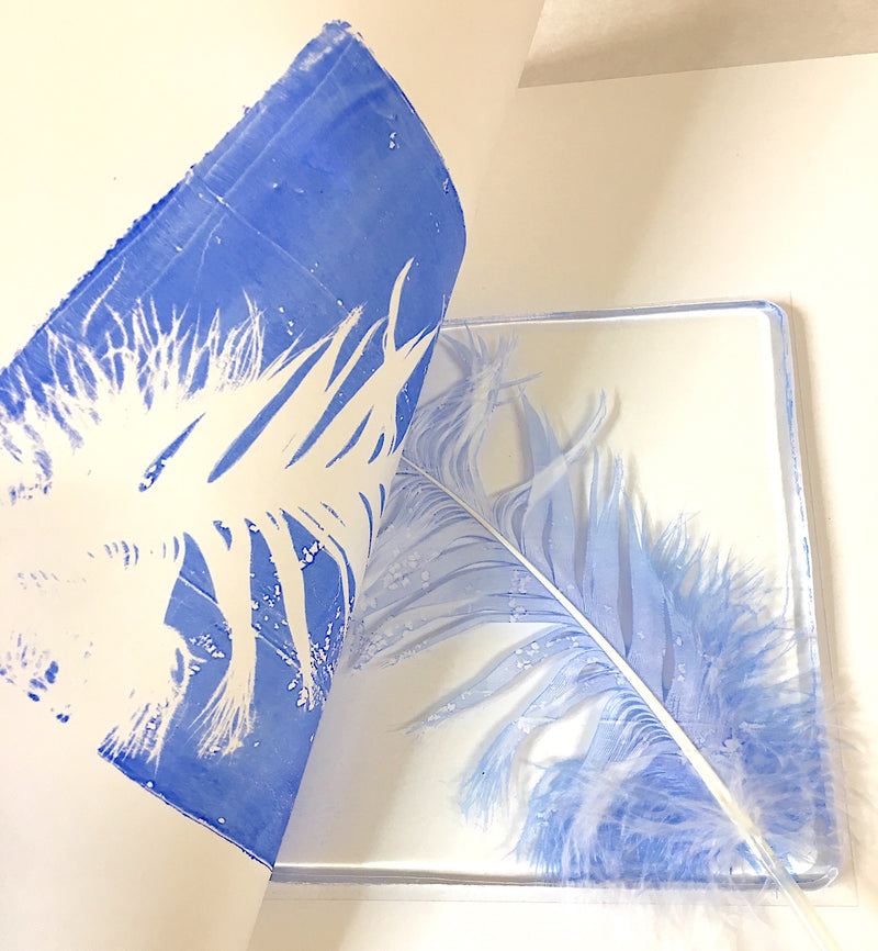 Feather Printing Kit