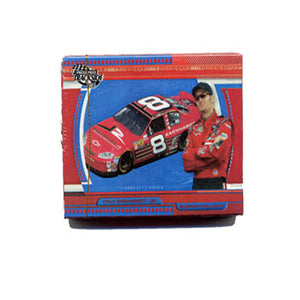 Dale Earnhardt Jr Playing Cards