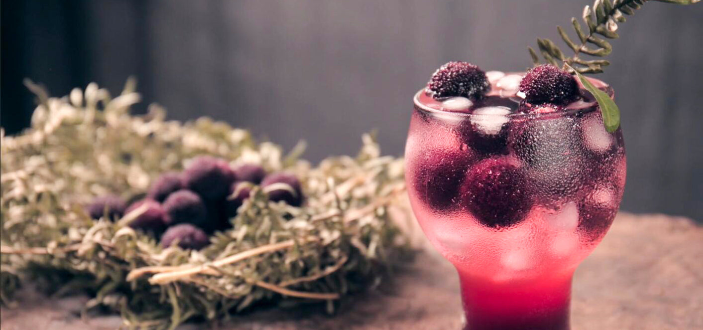Arbutus drink | Drinks Recipes for Summer in August