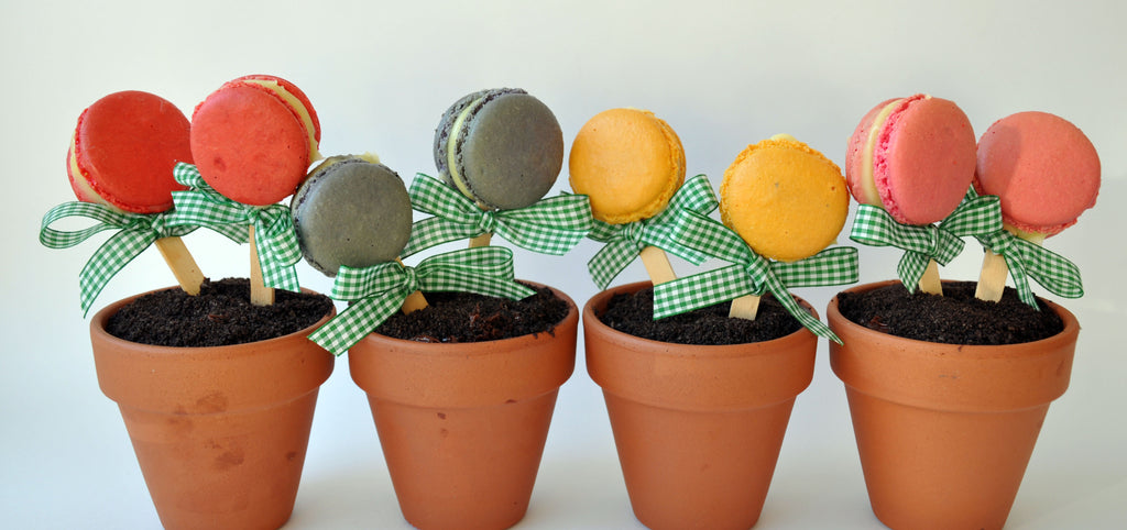 Oreo Potted Plants| August Homemade Dessert Recipe