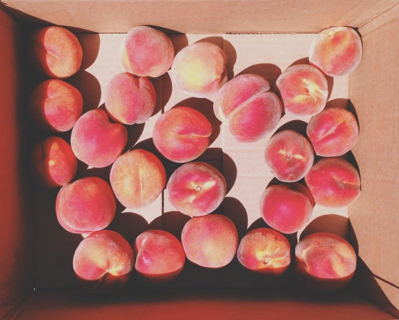 tender peaches