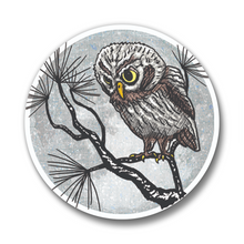 Load image into Gallery viewer, Winter Watch Owl Button Pin