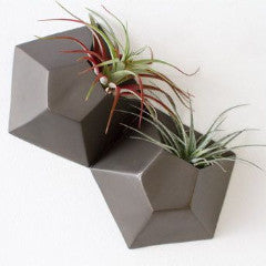 Hexagonal Double Wall Planter