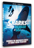 Danger in the Sea - Shark Collection