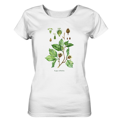 Rotbuche - Fagus sylvatica - Wasserfarben Illustration  - Ladies Organic Shirt