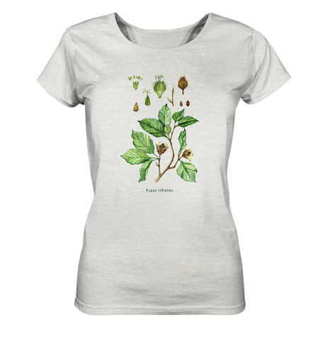 Rotbuche - Fagus sylvatica - Wasserfarben Illustration  - Ladies Organic Shirt (meliert)