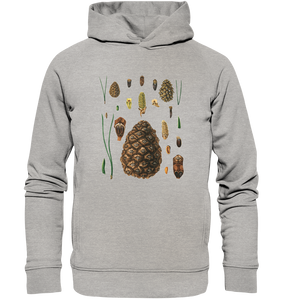 Kiefer (Pinus sp.) - Botanik Illustration - Organic Fashion Hoodie - Baum - Motiv - botani.cc