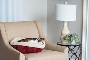 Self-Warming Cat Bed - Small - Red Cream