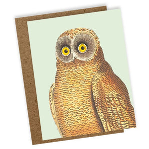 Mellow Owl Mini Greeting Card, Blank
