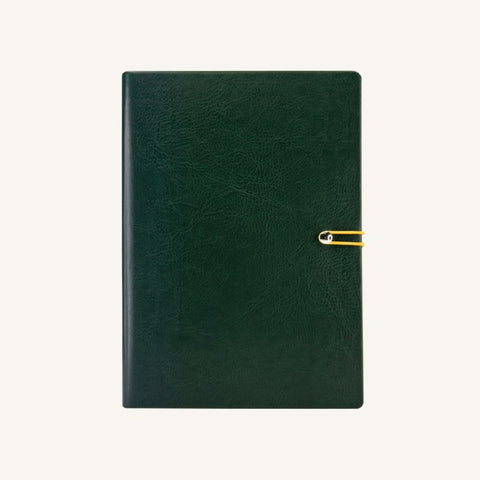 Executive 2021 Page-A-Day Diary (A5, Green)