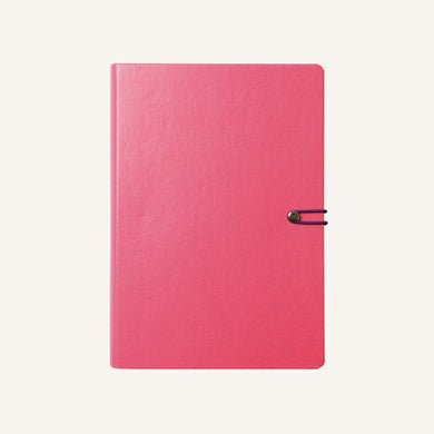 Executive 2020 Page-A-Day Diary (A5, Pink)
