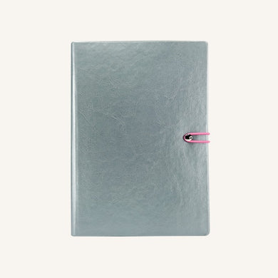 Executive 2020 Page-A-Day Diary (A5, Silver)