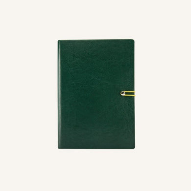 Executive 2020 Page-A-Day Diary (A6, Green)