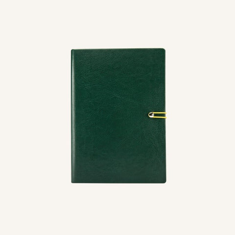 Executive 2021 Page-A-Day Diary (A6, Green)