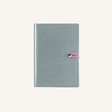 Executive 2020 Page-A-Day Diary (A6, Silver)