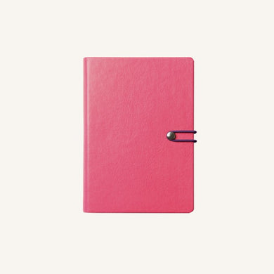 Executive 2020 Page-A-Day Diary (A6, Pink)