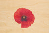 Red Poppy - Anzac Day Postcard