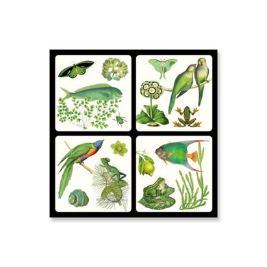 (Available early December) Set of Four Coasters, Green Attitude