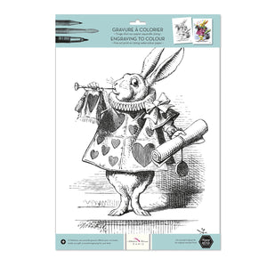 Alibabette Editions The White Rabbit