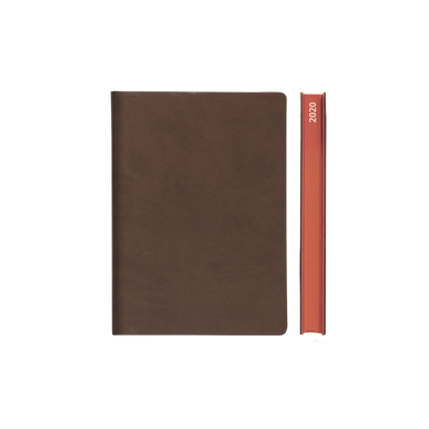 Signature 2020 Page-A-Day Diary (A6, Brown)