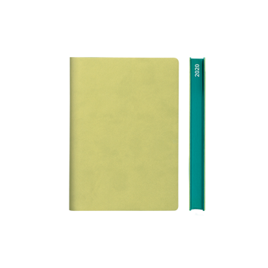 Signature 2020 Page-A-Day Diary (A6, Light Green)