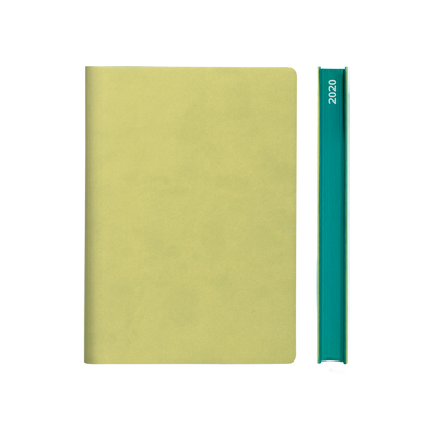 Signature 2020 Page-A-Day Diary (A5, Light Green)