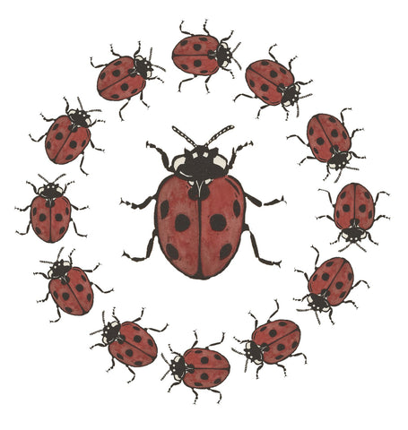 Sarah Cemmick Lino Cuts Lady Bug Ball