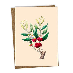 Allegro Greeting Card, Blank
