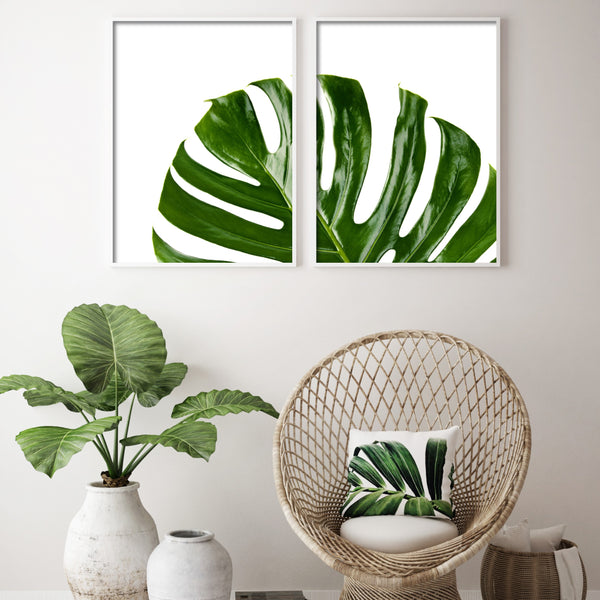 MONSTERA SPLIT LEAF SET