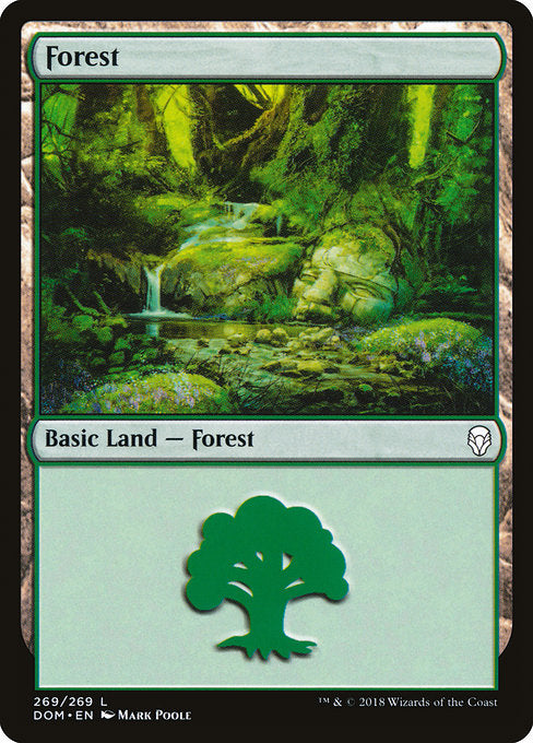 Forest [Dominaria] | Myrtle Beach Games & Comics