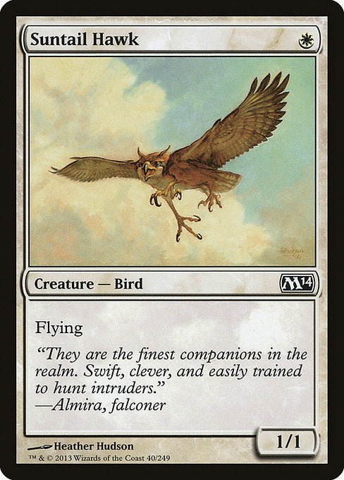 Suntail Hawk [Magic 2014] | Myrtle Beach Games & Comics