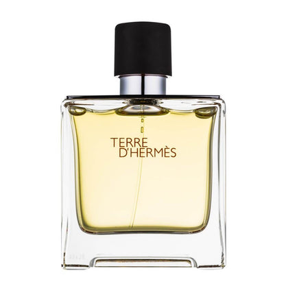 Hermes Terre D'Hermes Eau De Perfume For Men - 75ml