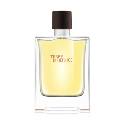 Hermes Terre D'Hermes Eau De Toilette For Men - 100ml