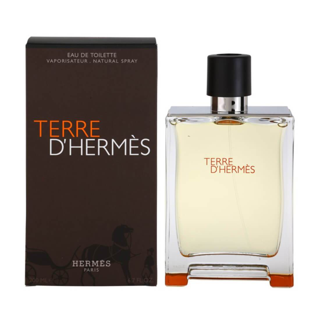 Hermes Terre D'Hermes Eau De Toilette For Men - 200ml
