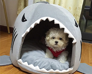 3 Colors Cartoon Shark Dog Bed :  Warm Cat Bed with Detachable Pillow - Small Dog House