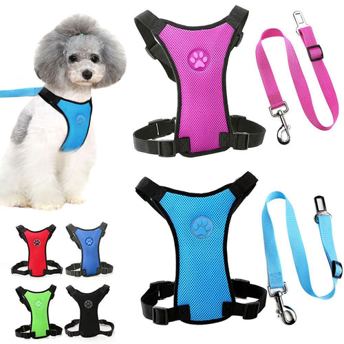 Adjustable Travelling Safety Harness with Seatbelt Clip