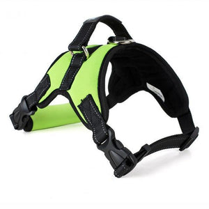 No-Pull Dog Safety Harness (With FREE Gift - A $15 Value!)