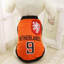 Year-Round Sports Vest For Dogs